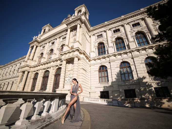 the story of a girl i met in vienna